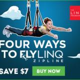 Fly Linq Zipline